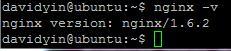 nginx-version