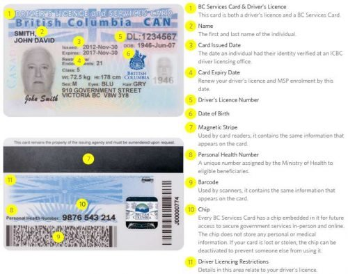 drivers-licence-and-services-card